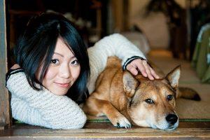 648_dog_beauty